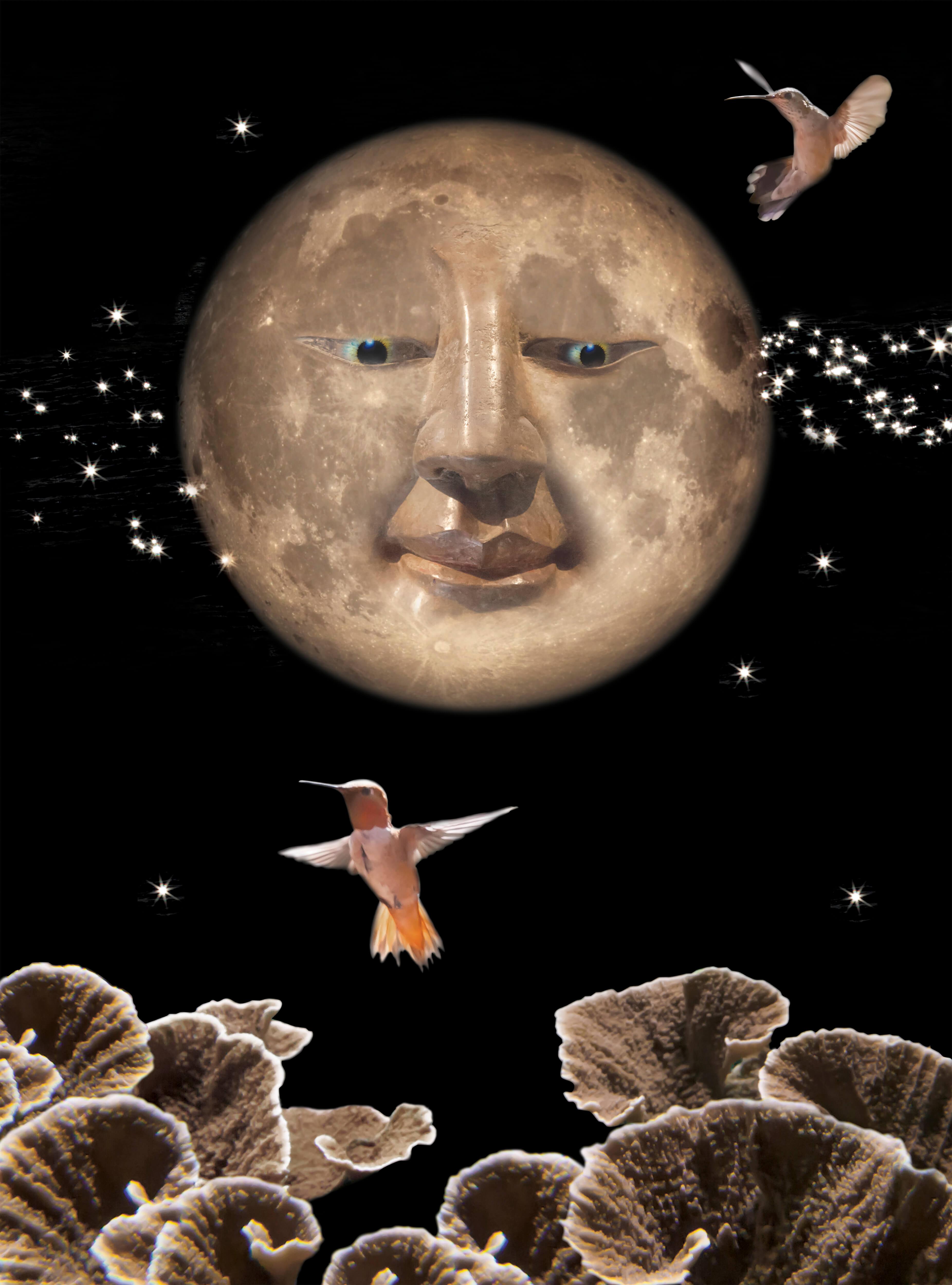 Cheshire Moon-Hathaway