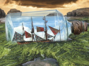 Ship to Shore