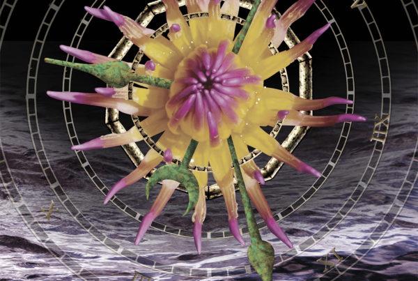 Solaris-Hathaway