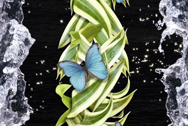 Spring Migration-Hathaway